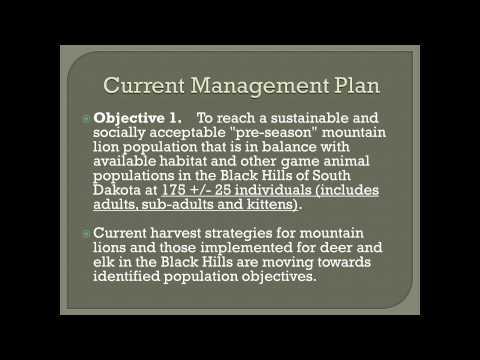 Mountain Lion Management Plan Extension