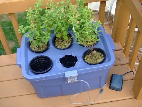 diy hydroponics growing system homemade for beginners youtube. Black Bedroom Furniture Sets. Home Design Ideas
