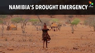 Namibia's Drought Emergency