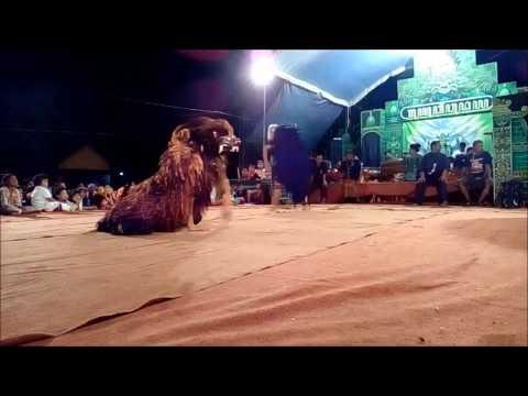Atraksi Singo Barong terbaik yang pernah terlihat (tonton sampai akhir)