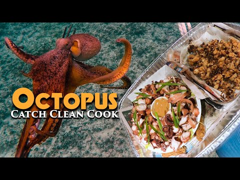 DELICIOUS Octopus Double Dish -Miso Peanut Butter & PopCornCatch and Cook Spearfishing Hawaii