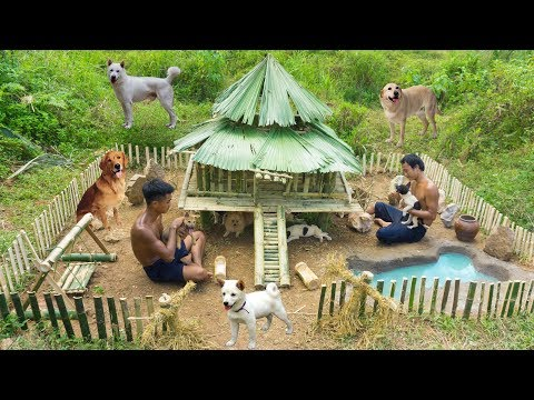 Rescue Abandoned Puppies Building Bamboo House And Swimming Pool For Dog
