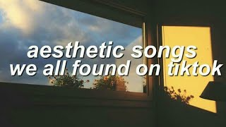 popular aesthetic songs that we all found from tiktok screenshot 5