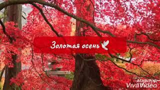 Я чувствую как пахнет осень Красивые стихи Rita Matuchina