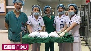 Ca sinh 3 tự nhiên hiếm gặp ở Nghệ An| VTC1