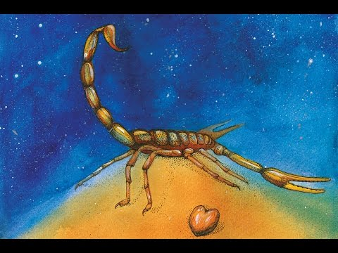 Scorpio in the constellation of Libra.