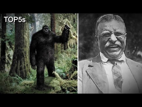 5 Most Believable Sightings, Stories & Encounters with Bigfoot