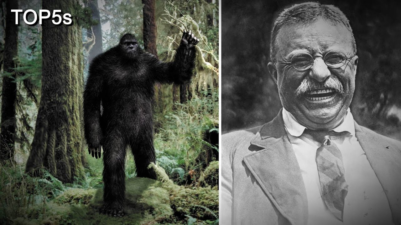 5-most-believable-sightings-stories-encounters-with-bigfoot