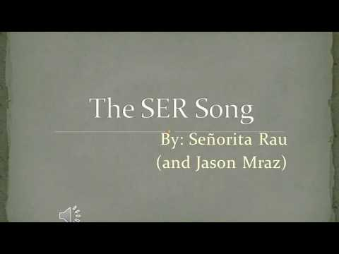 The SER song, but every time the verb is conjugated, it gets 4% faster