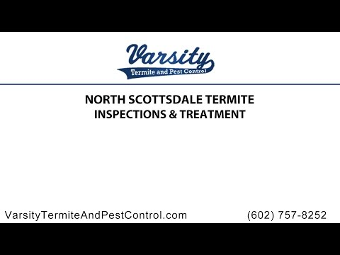 North Scottsdale Termite Inspections and Treatment By Varsity