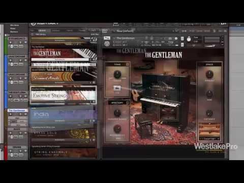 The Gentleman Review Komplete 11 Select Native Instruments | Westlake Pro