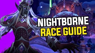 Worst Allied Race? Battle For Azeroth Nightborne - Complete Race Explanation & Guide