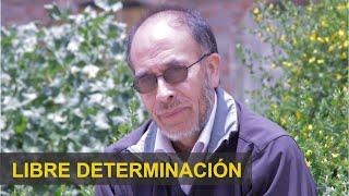 José Luis Saavedra: Conferencia Sobre Libre Determinación y Autonomías de los Pueblos Originarios