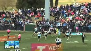 NRL 2014 Round 20 Panthers Vs Sharks Highlights