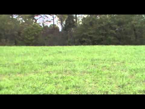 Ashcraft Road 27.1 acres, Land for Sale in Mason County Kentucky