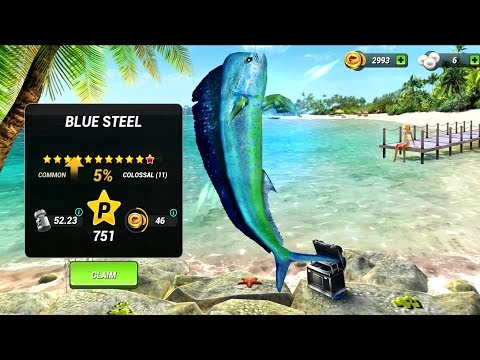 fishing-clash:-catching-fish-game.-bass-hunting-3d-android-gameplay