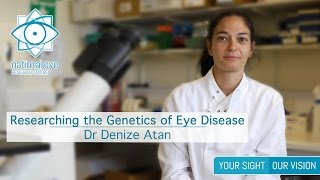 Researching the Genetics of Eye Disease