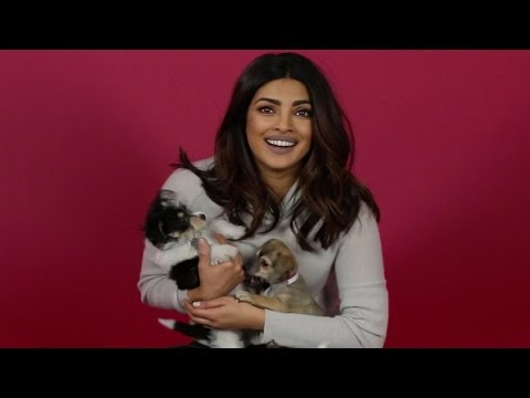Thumbnail: We Surprised Priyanka Chopra With Puppies And Then She Adopted One