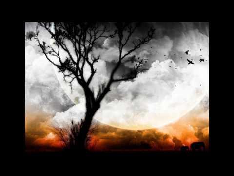 High Hopes-Pink Floyd (with lyrics)