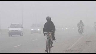 فيديو. الأرصاد: استقرار الأحوال الجوية.. وارتفاع تدريجي في الحرارة الأيام المقبلة
