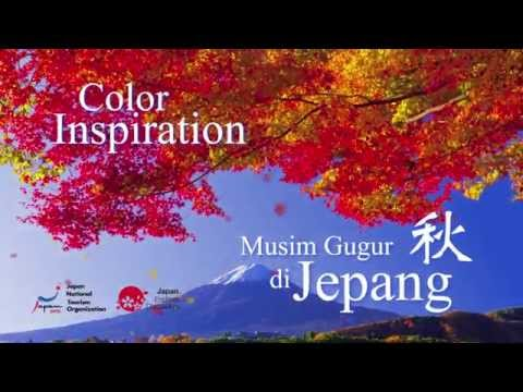 TVC JNTO Color Inspiration Autumn version.A