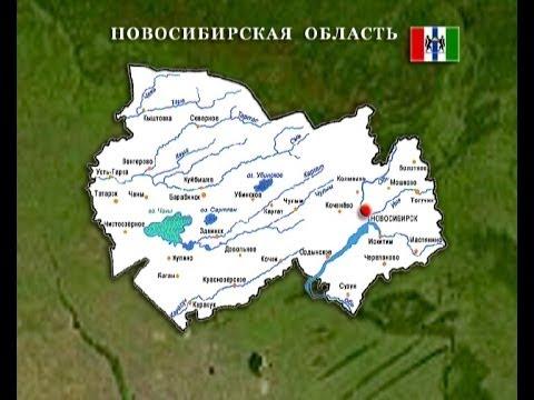 NSO 2011 BNN
