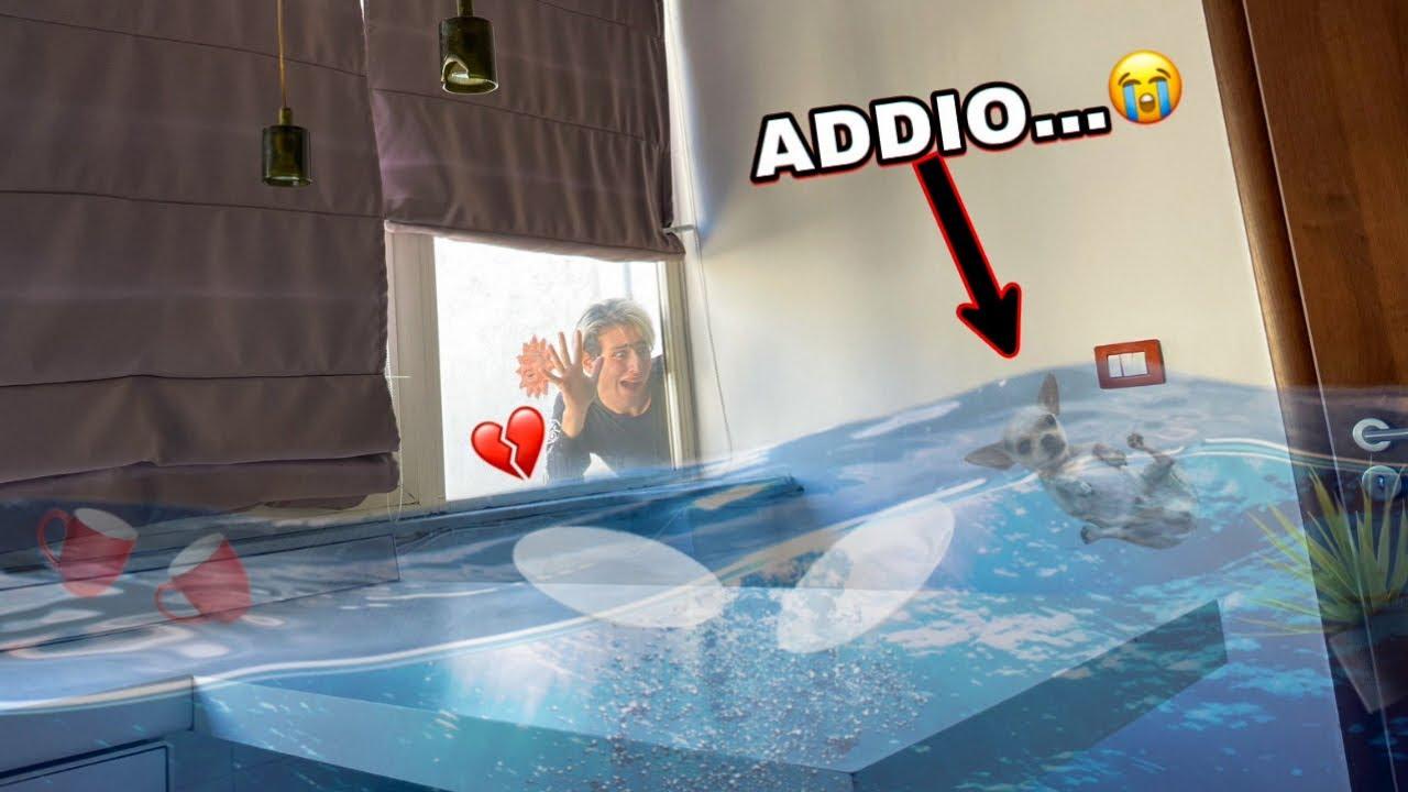 LASCIAMO IL NOSTRO CAGNOLINO IN UNA CASA ALLAGATA!! *è piena d'acqua*