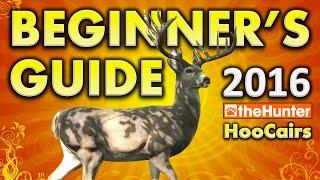Beginner's Guide 2016 - theHunter Hunting Game