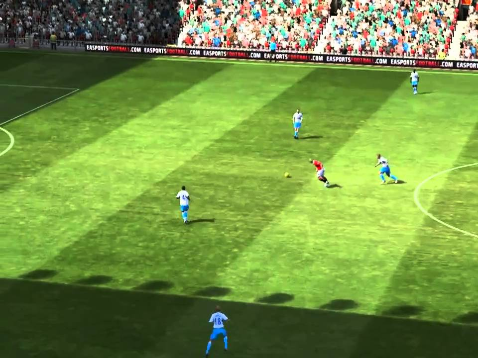 Download Fifa 11 - Darren Fletcher Chip