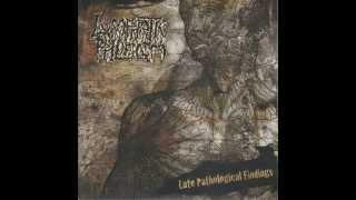 "Lymphatic Phlegm / Amoebic Dysentery split 7"" FULL EP (2011 - Goregrind)"