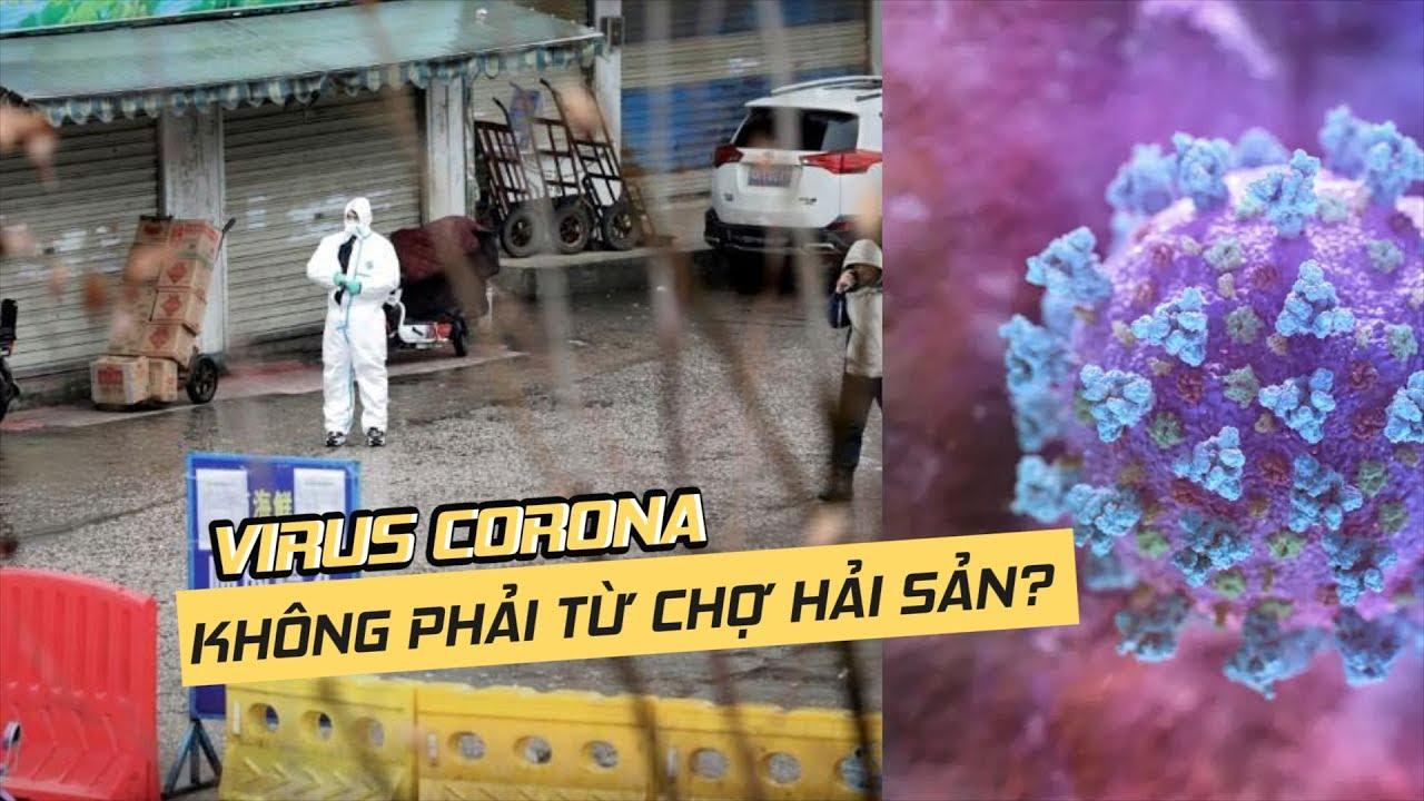 Virus Corona có thể không bắt nguồn từ chợ hải sản Vũ Hán