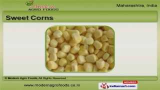 Vegetables And Food Products By Modern Agro Foods, Pune