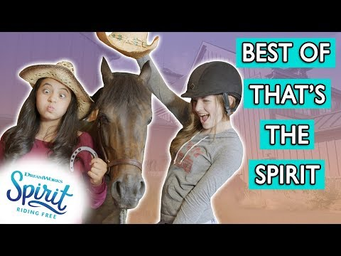 Our BEST 2017 Moments! | THAT'S THE SPIRIT