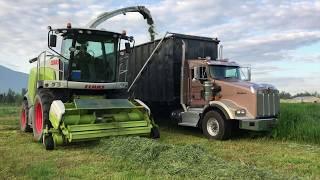 Harvesting 1st Grass Silage 2018    Cover Crop    HvW Custom