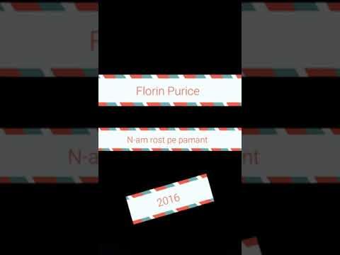 Florin Purice Nu am rost pe pamant 2016