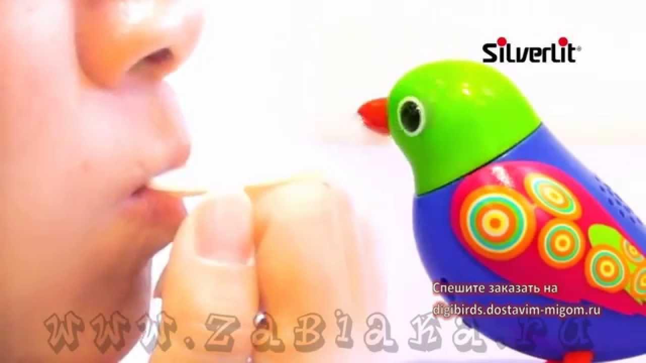 Digibirds забавные интерактивные птички и совы, с которым никогда не будет скучно. Они умеют издавать звуки и щебетать различные мелодии,