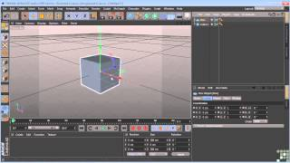 Cinema 4D Tutorial   Coordinate Systems