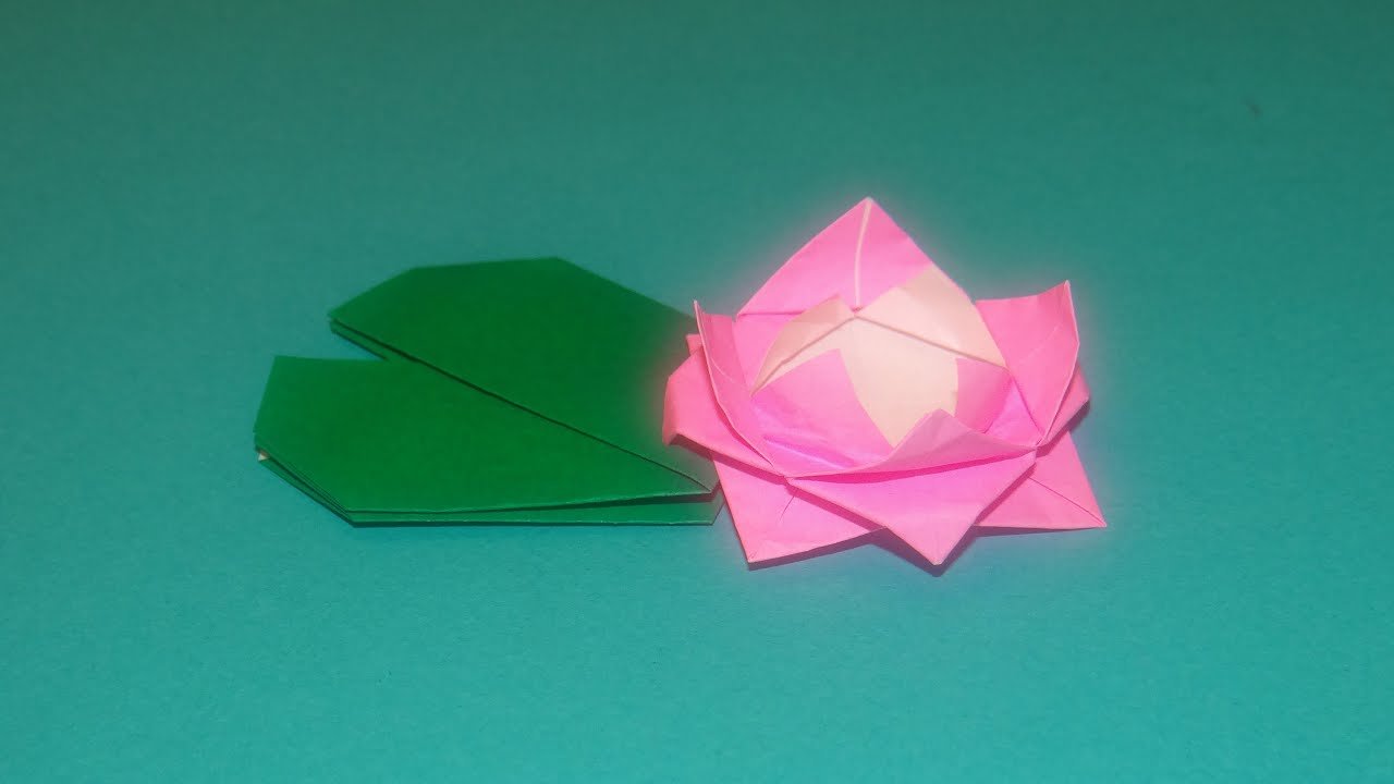 How To Make An Origami Water Lily Nymphaeaceae Youtube