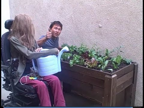 Accessible Wheelchair Elevated Raised Bed Container Garden from Start to Finish