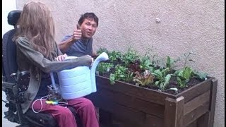 Accessible Wheelchair Elevated Raised Bed Container Garden from Start to Finish thumbnail
