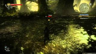 Witcher 2 - Drowner vs. Nekker