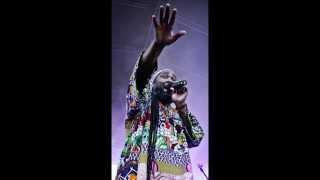 Mighty Howard & Earthikal Towa - Lion Paw + Dub Vibronics (Official Video)