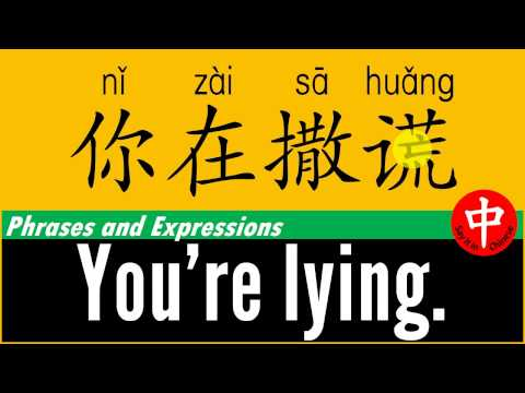 How to say ★ YOU'RE LYING ★ in Chinese?