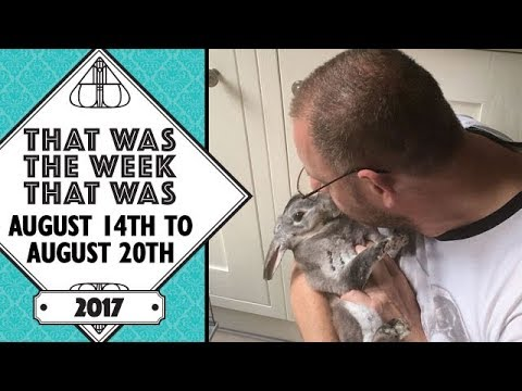 VLOG - That Was The Week That Was August 14th to 20th 2017