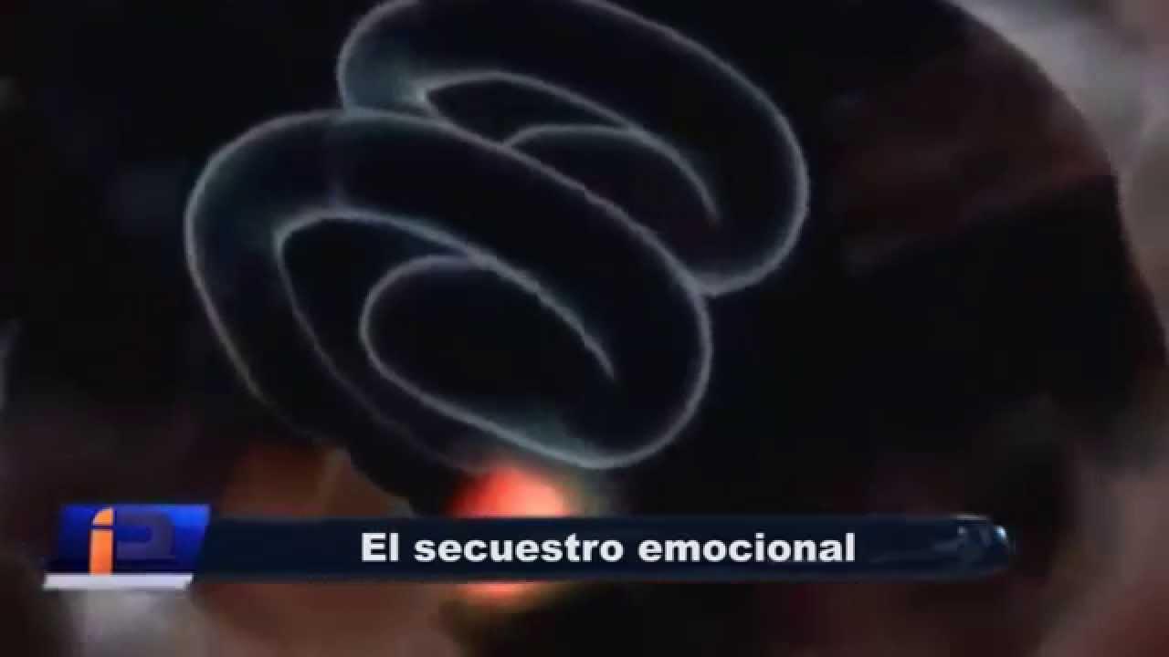 EL SECUESTRO EMOCIONAL - YouTube