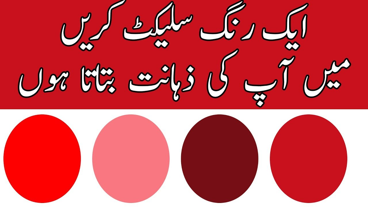 What Is Your Mental Age || IQ Test || Urdu