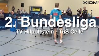 2. Bundesliga | TV Hilpoltstein - TuS Celle | Highlights
