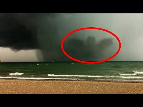 11 Giant Creatures Caught on Tape