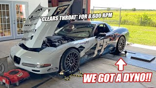 homepage tile video photo for We Got a Dyno For the New Shop!!! Revving Donnie to the MOOOOOON For the First Pulls!!!