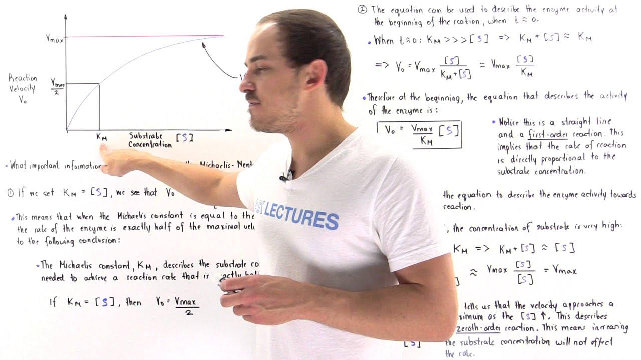 Download Interpretation of Michaelis-Menten Equation